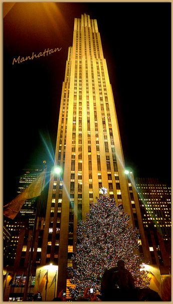 Rockafeller Centre Christmas Tree, NYC