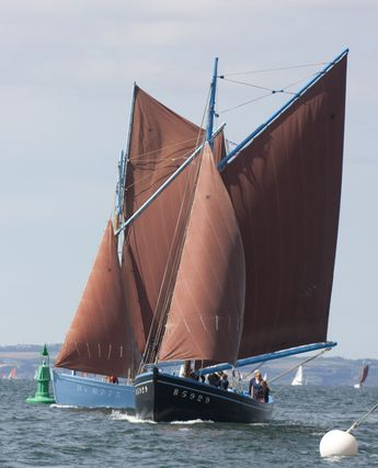 Sloops coquilliers restaurés de de la rade de Brest