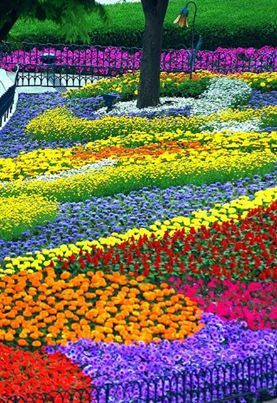 gardens full of beautiful flowers.