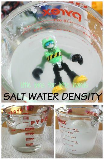 Salt Water Density Experiment For Kids