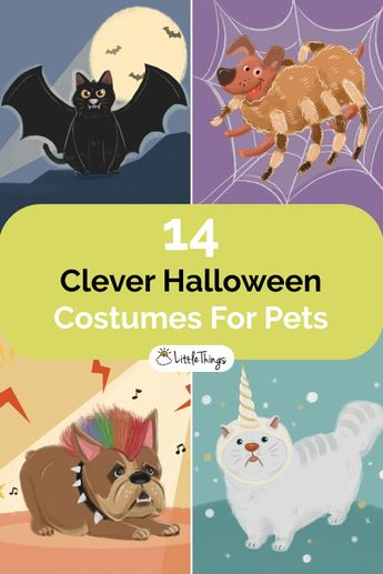 14 Of The Cutest And Most Clever Halloween Costumes For Pets