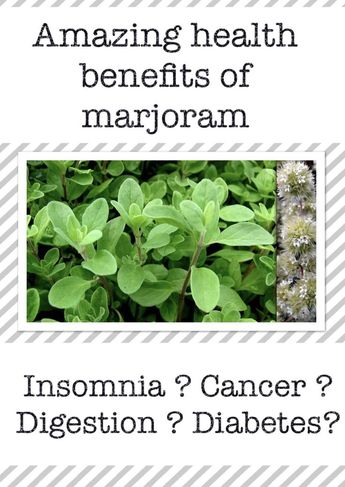 Amazing health benefits of marjoram ( Marjolaine