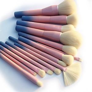 Gradient Color Pro 14pcs Makeup Brush Set