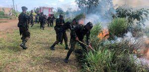 Bolsonaro mantém Forças Armadas na Amazônia até outubro
