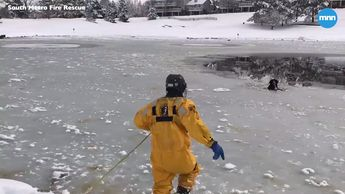 Firefighters rescue a dog stranded in an icy pond in Colorado