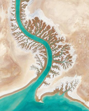 "Daily Overview on Instagram: ""Dendritic drainage systems are seen around the Shadegan Lagoon by Musa Bay in Iran. The word 'dendritic' refers to the pools' resemblance…"""