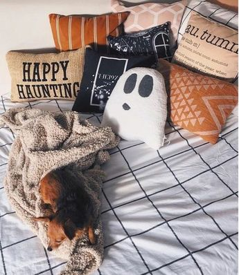 I cant believe its already august!! I am so not ready for school to start! Butttt that just means we are getting closer to fall szn!!! #fall #summer #spring #winter #halloween #christmas #spooky #autumn #cozy