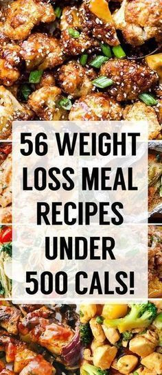 56 Unbelievably Delicious Weight Loss Dinner Recipes Under 500 Calories!