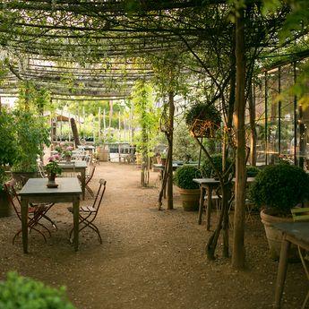 Spotlight On: England's Petersham Nurseries