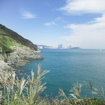 오륙도 스카이워크 : 네이버 블로그