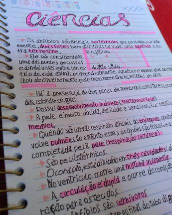 Título meio merda mas ok!New Post pra nós 💜. . . . . . . . . . #rosa #marcatexto  #study #studygram  #stabilo #caneta #ciencias #caderno #amoestudar #love #ideiasdetitulos