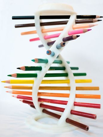 3D Printed DNA Helix Pencil Holder