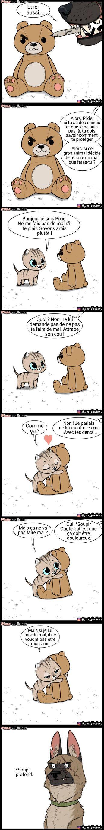 Unartiste dessine des bandes dessinées sur l'amitié d'un chaton adorable etd'un chien qui nelaisseront personne indifférent