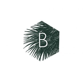 4 Ways to Use Nature Logo Design for Your Brand