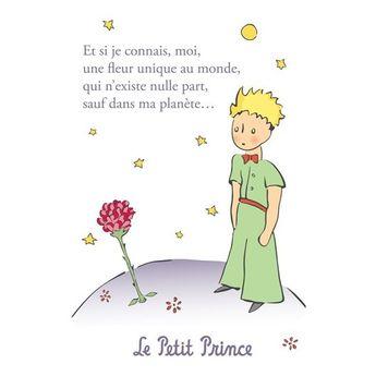Carte postale Le Petit Prince - Une fleur unique au monde 2