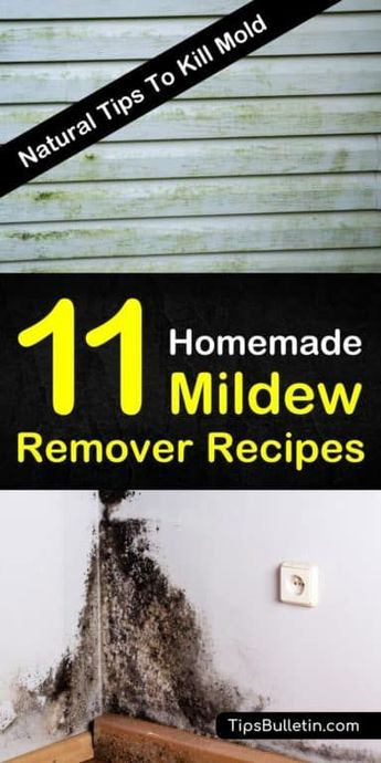 Homemade Mildew Remover Recipes - 11 Natural Tips To Kill Mold
