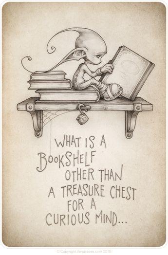 What is a bookshelf...