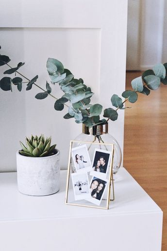 Succulent and eucalyptus