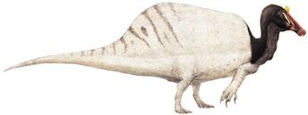 What 6 Dinosaurs from Jurassic Park Really Looked Like