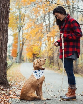 54 PURRFECT DOG PHOTOS TO BRIGHTEN YOUR DAY | FallinPets