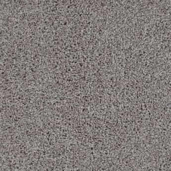Shaw Carpets Inkspot Carpet In Fast Ball 501 Bedrooms Closets