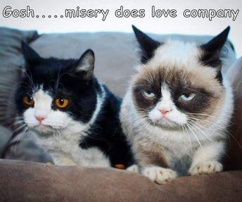 Gosh.....misery does love company