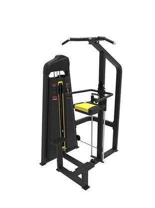 China Dip Chin Assist aeroEX-6038   Dip/Chin Assist fitness equipment