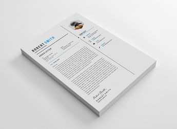 Perfect CV Design Template 002875 - Template Catalog