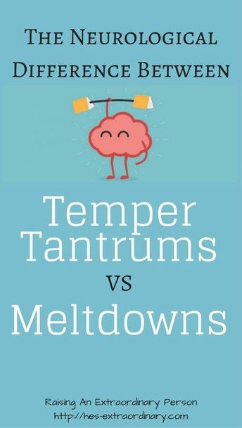 the neurological difference between temper tantrums vs meltdowns