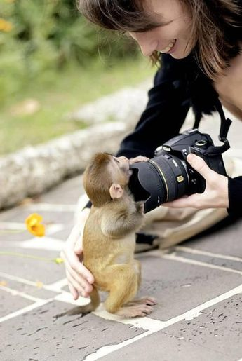 Can You Take my Picture?