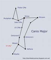 Canis Major Constellation Tattoo