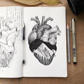 Les-dessins-de-nature-melee-de-Alfred-Basha-19
