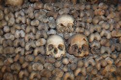 The Catacombs - Paris - Reviews of The Catacombs - TripAdvisor