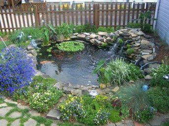 Small backyard pond...nice