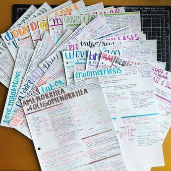 28 pages of study notes brightly coloured mix ★·.·´¯`·.·★ follow @motivation2study for daily inspiration