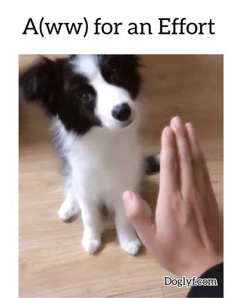 A(ww) for an effort