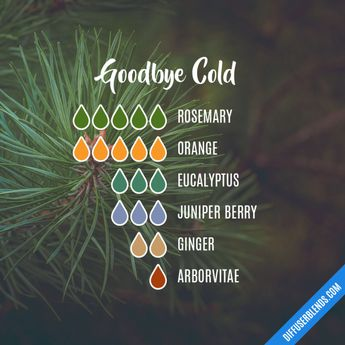 Goodbye Cold - Essential Oil Diffuser Blend