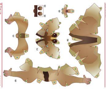 Slow loris template