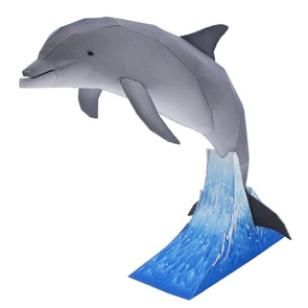 Bottlenose Dolphin,Animals,Paper Craft,gray,Marine Mammals,sea,Animals,Paper Craft,Dolphin