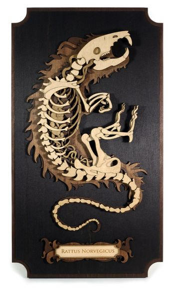 Laser Cut Skeletons