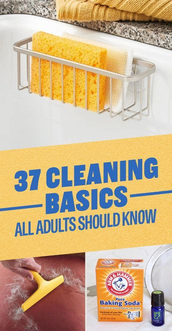 37 Cleaning Basics All Adults Should Know