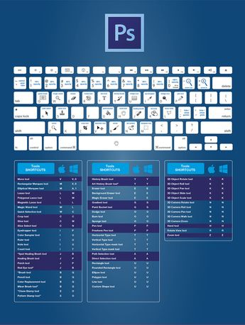 Infographie : Les raccourcis clavier de la suite CC