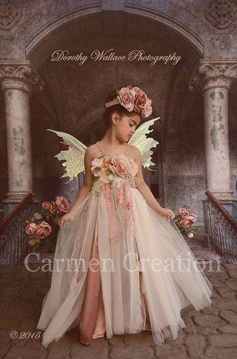 Dorothy Fairy Dress