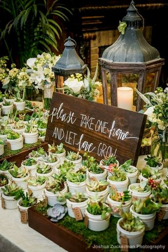 45 #Succulent #Marriage ceremony Thoughts WHICH ARE In Tendency