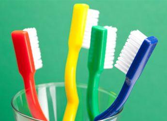 Tipos de bacterias que habitan en los cepillos de dientes