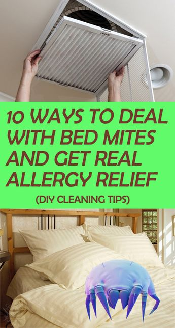 20 Natural Home Remedies to Get Rid of Bed Mites (Dust Mites in Bed)