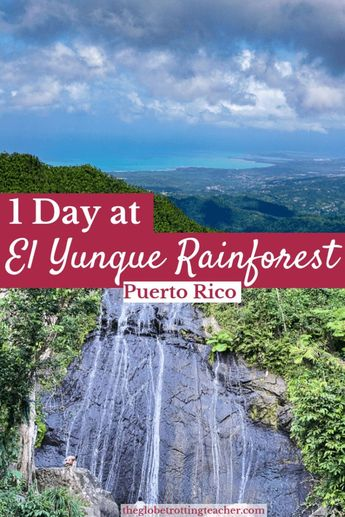 How to Spend a Day at El Yunque National Forest in Puerto Rico