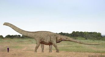 We Posed These Prehistoric Animals Next to Human Beings