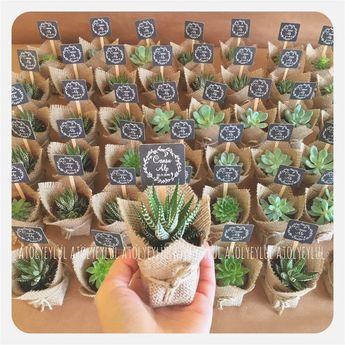Cute Wedding Favors Best Of Living Room Succulent Vase New Mini Sukulent Mini Succulent Kaktüs Ideas #weddingfavors