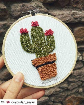 #Repost @duygudan_seyler (@get_repost) (ey g Punch sevenleer ep. ...   - Cactus arrangements ideas -  #Cactusarrangements -  #aduygudan #cactus #punch #repost #sevenleer #seyler